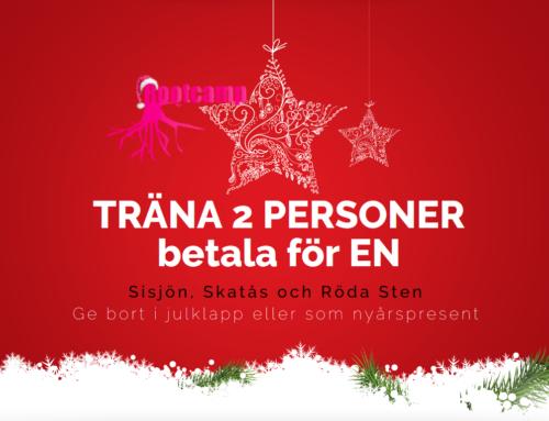 Lucka 3: Två-för-en Julerbjudande